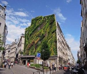 vertical-garden 2